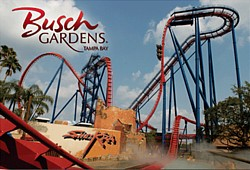 Busch Gardens in Tampa Bay Florida Best Florida Beaches Best